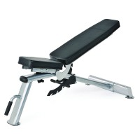 NEU Horizon Fitness Trainingsbank Adonis